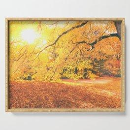 New York City Autumn Sun Serving Tray