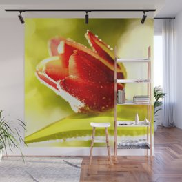 Glowing Red Tulip On A Vivid Green Background #decor #society6 Wall Mural