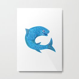 Grey Mullet Jumping Drawing Metal Print