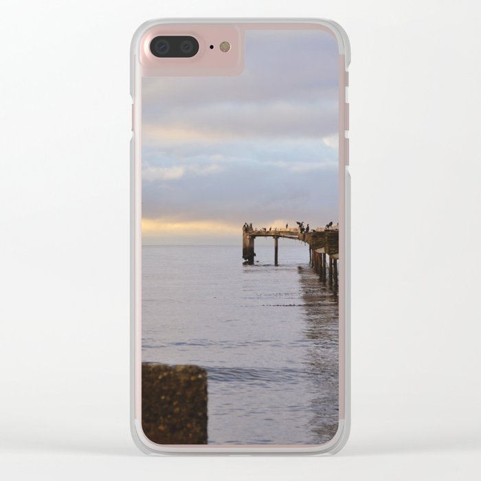 The Seagulls 2 Clear iPhone Case