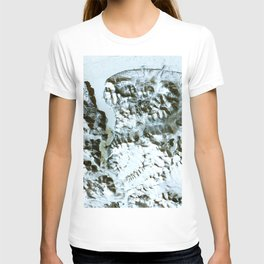 The northernmost land in the world is located in Pearyland Greenland T-shirt