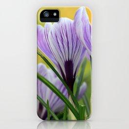 Krokuswiese  iPhone Case