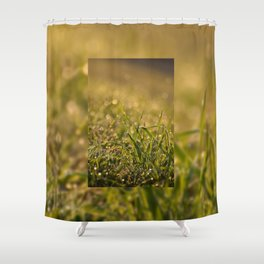 Green fresh grass leaves Shower Curtain
