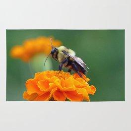 Busy Bee Rug