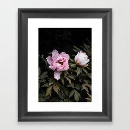 Flowers -a48 Framed Art Print
