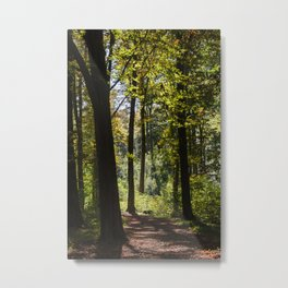 Woodland Mood Metal Print