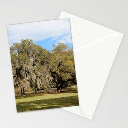 Southern Live Oaks Stationery Cards