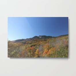 Autumn Forest under a Blue Sky, Horizontal Metal Print
