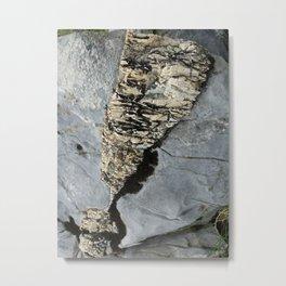 Moonier Metal Print