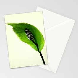 The Green Hoodie Stationery Cards