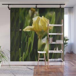 Yellow Iris Wall Mural