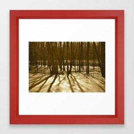 Trees in Ice Framed Art Print