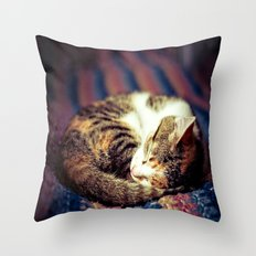 Cozy Curled Up Kitten  Throw Pillow
