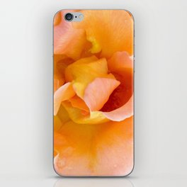Orange ,Rosa Rose iPhone Skin