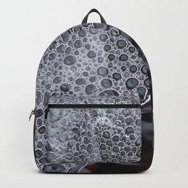 Poetic thaw of ice. Backpack