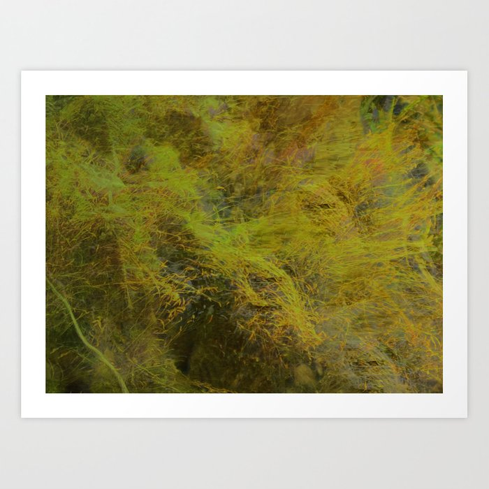 Moss ~ Abstract Art Print