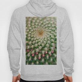 Cactus close-up shot, natural abstract background Hoody