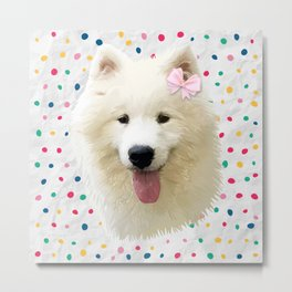 Sweet Samoyed Dog Metal Print