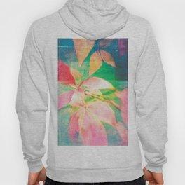 Autumn Pastels 02 - Matte Hoody