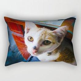 warm welcome Rectangular Pillow