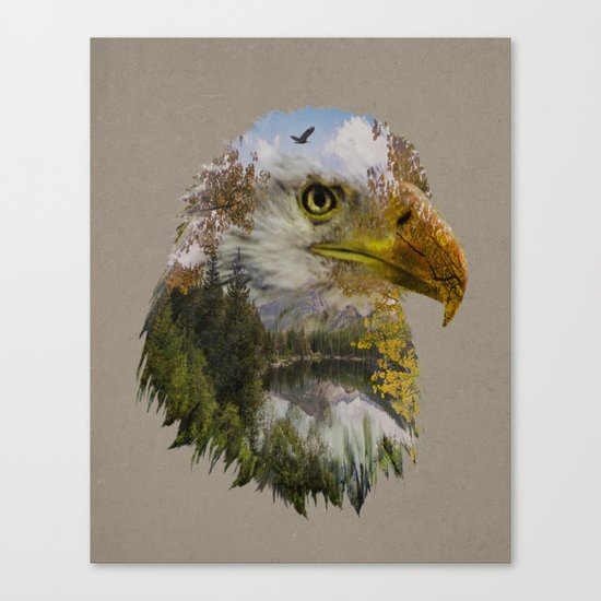 The American Bald Eagle Canvas Print