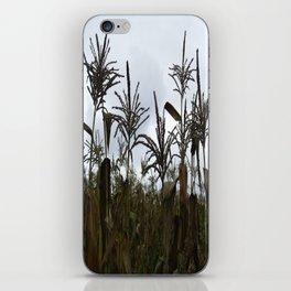 Fall on the Island iPhone Skin