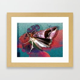 Killer Chrysalis Framed Art Print