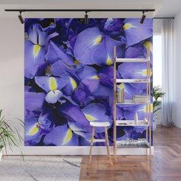 Glorious Royal Purple Iris Flowers Wall Mural