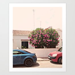 Residential Street on a Spanish Island Art Print