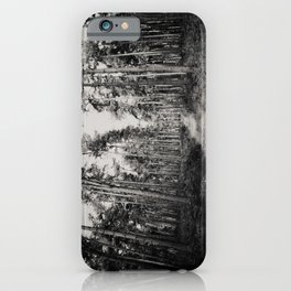 the path through the forest ...  iPhone Case