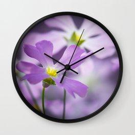 Primrose macro purple 021 Wall Clock