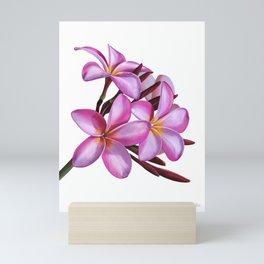 Plumeria Mini Art Print