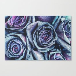 Macro photography of purple - neon roses with raindrops. Fantasy and magic concept. Selective focus. Canvas Print