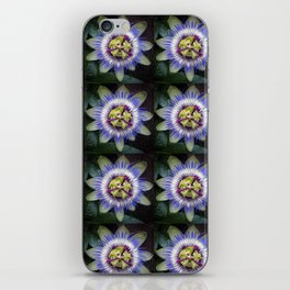 Nature Mandala 1 iPhone Skin