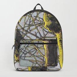 Sunset light Backpack
