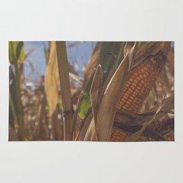 Fall Corn Rug
