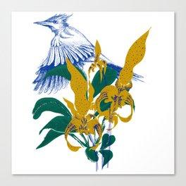 Midnight blooms - Asian paradise fly catcher bird Canvas Print