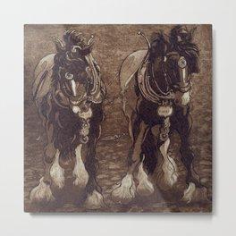 Shires / Horses Metal Print