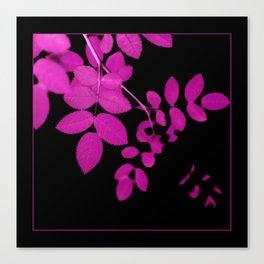 Uber Bright Pink Leaves on Black Canvas Print