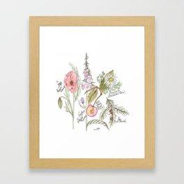 Natures Bounty Framed Art Print