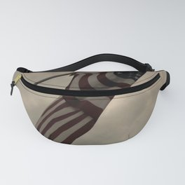 Old Glory Fanny Pack