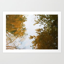 above water Art Print