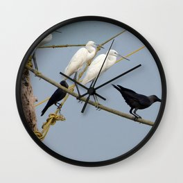 Egrets and Crows, Cochin, India Wall Clock
