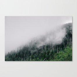 Misty Great Smoky National Park  Canvas Print