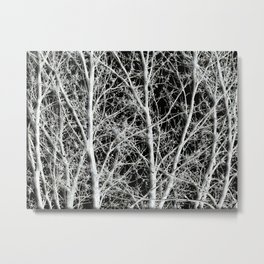 Oak Fantasy Metal Print