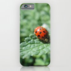 Ladybug on a Leaf Slim Case iPhone 6s