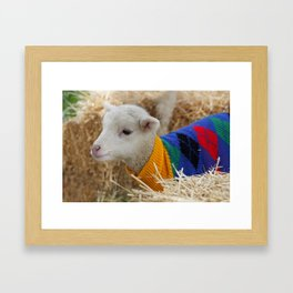Lamb In from the Cold Framed Art Print