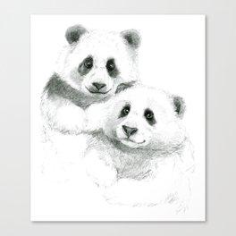 Giant Panda sketch SK064 Canvas Print