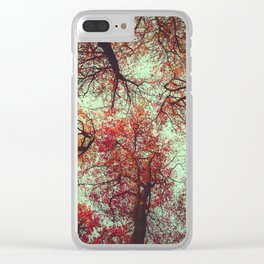 scarlet tree tops Clear iPhone Case
