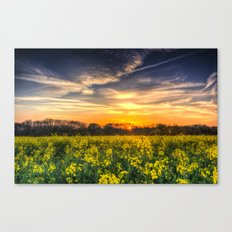April Afternoon Field Canvas Print
